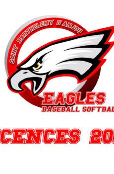 licence baseball angers